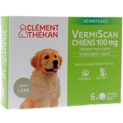 VermiScan Chiens 100mg 6 comprimés