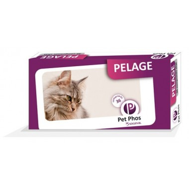 Pet Phos pelage chat 36cps