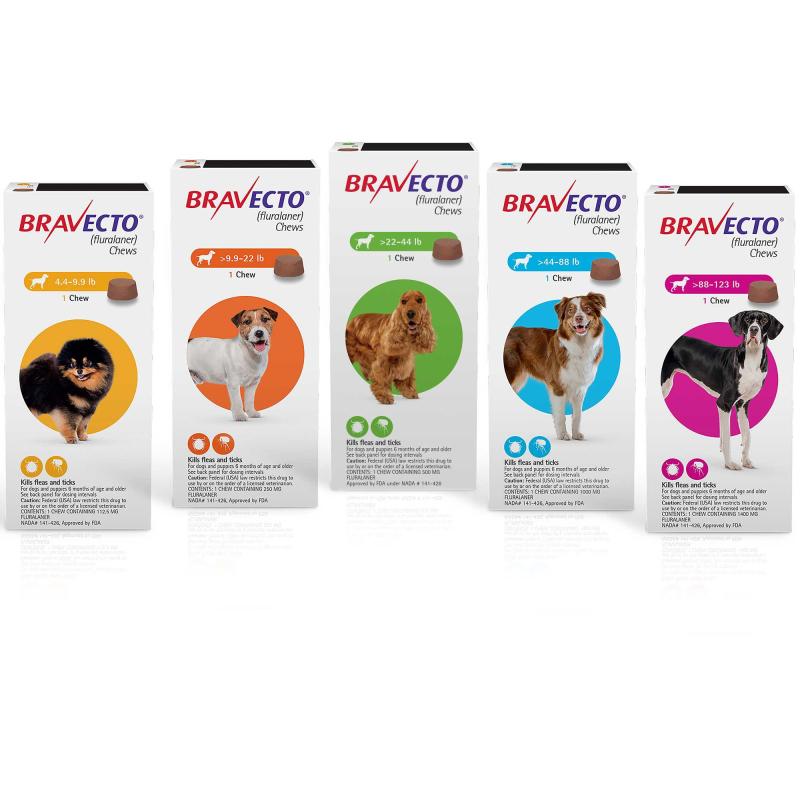 Bravecto 250 mg Chien 4,5 à 10 kg Boîte de 2 disponible sur Pharmacasse