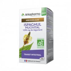 Arkogélules Bio Ispaghul Mucivital Boîte de 45 gélules