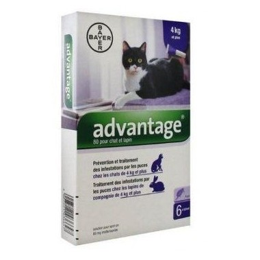 ADVANTAGE 80 chat 6 pipettes
