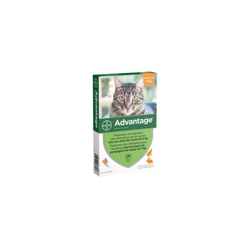 ADVANTAGE 40 chat 4 pipettes disponible sur Pharmacasse