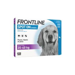 Frontline Spot-on Chien L 20 à 40kg 6 pipettes disponible sur Pharmacasse