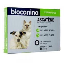 Ascatène chien et chat 10 comprimés