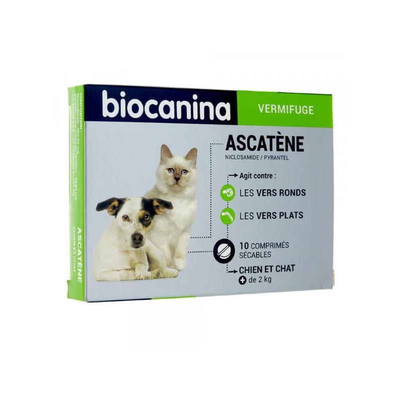 Ascatène chien et chat 10 comprimés disponible sur Pharmacasse