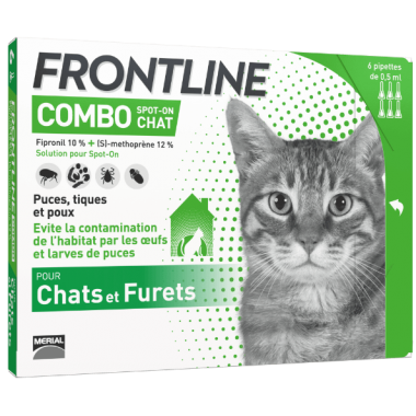 Frontline combo chat 6...